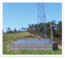 Microgrid Solutions